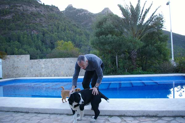 Pet-Friendly-Spain-12