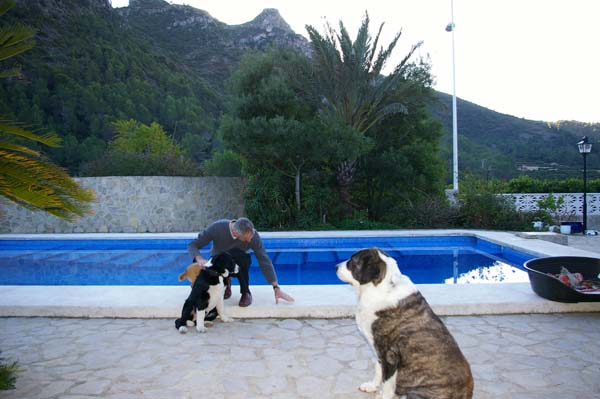 Pet-Friendly-Spain-13