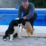 Pet-Friendly-Spain-14