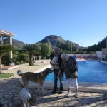 Pet friendly Spain