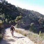 Cross Country Mountain Biking