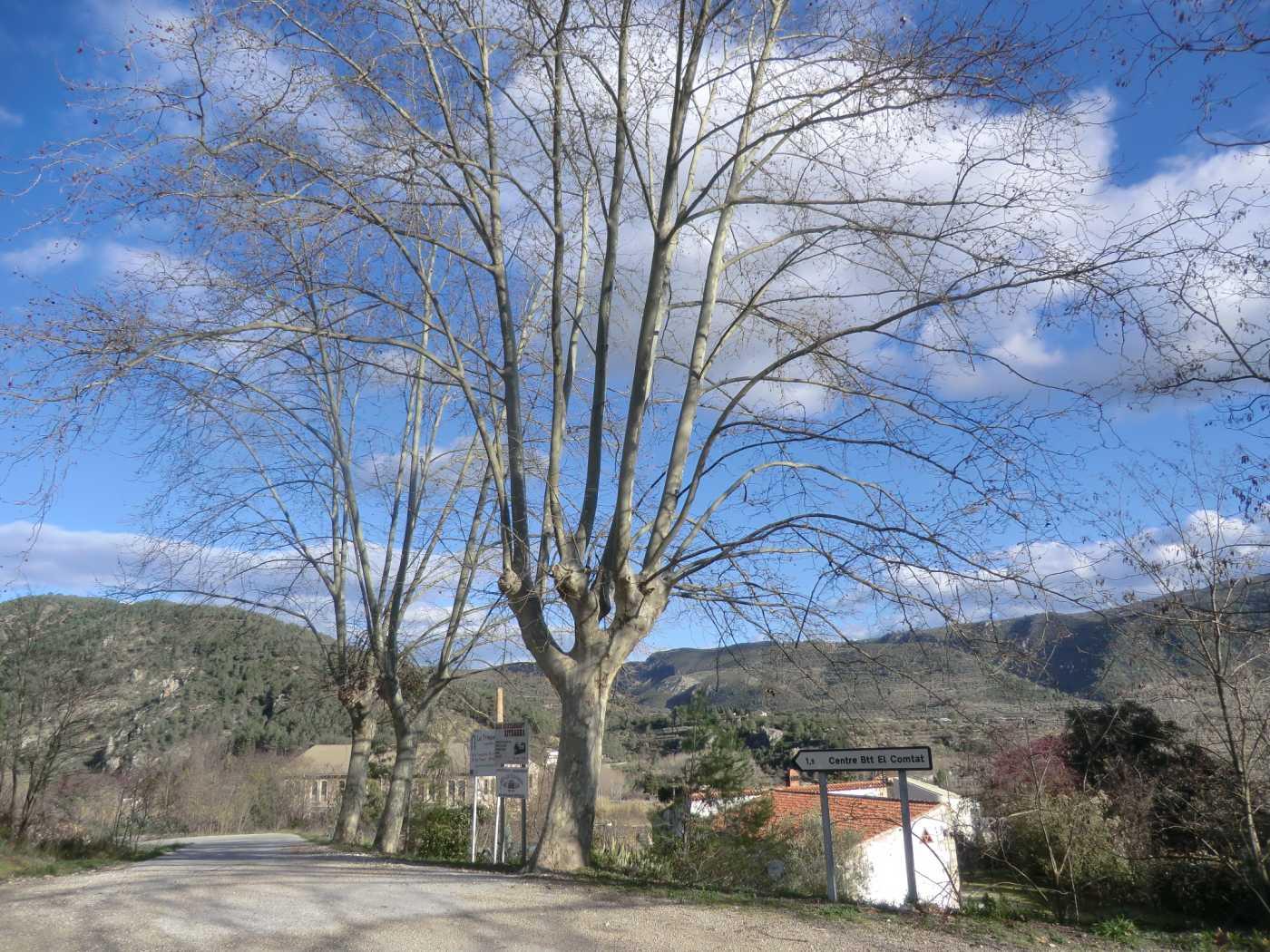 Cross-Country-MTB-Spain51