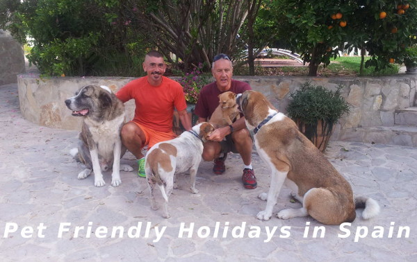 Pet Friendly Holidays in Spain