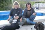 Pet Friendly Bed And Breakfast Spain